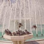 5 tipů, kam se vydat během slunečného dne